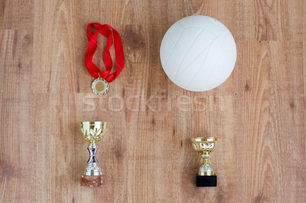 Volleybal bal sport Stockfoto © dolgachov