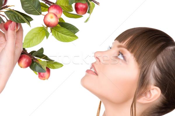 Mujer manzana ramita Foto cara belleza Foto stock © dolgachov
