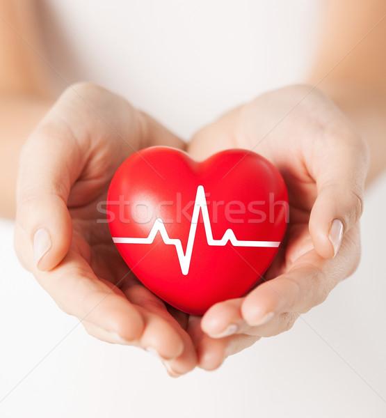 Vrouwelijke handen hart lijn Stockfoto © dolgachov
