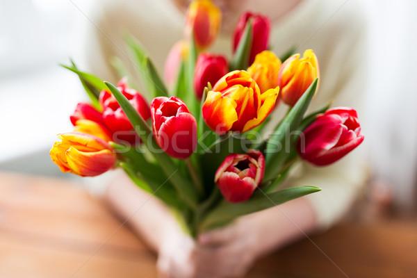 close up of woman holding tulip flowers Stock photo © dolgachov