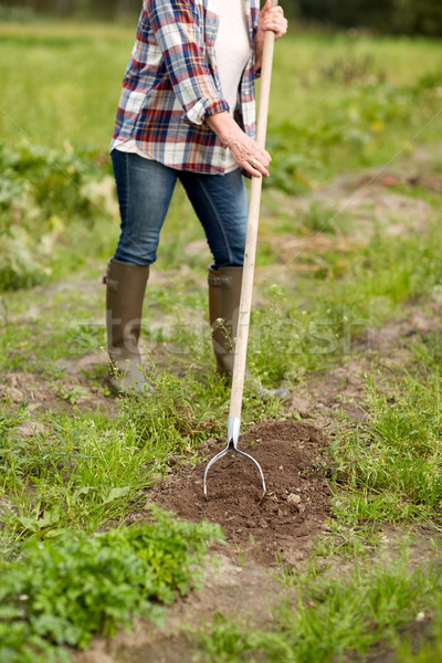 farmer with rearer weeding garden bed at farm Stock photo © dolgachov