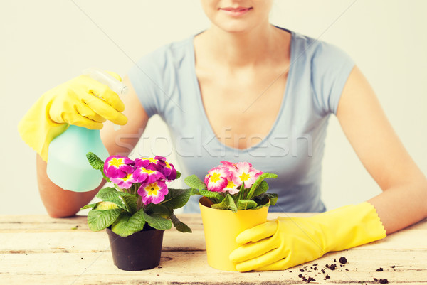 housewife with flower in pot and spray bottle Stock photo © dolgachov