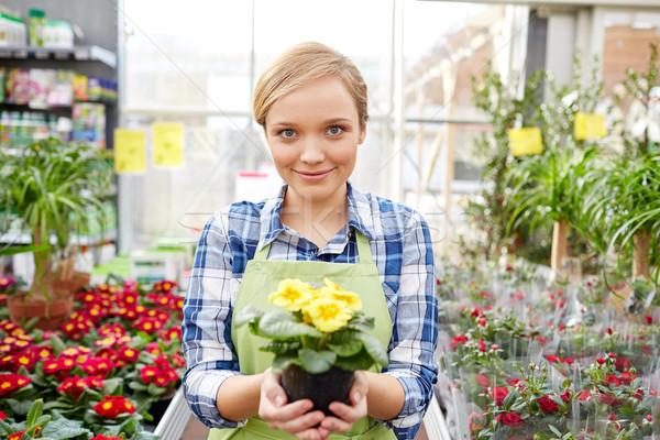 Feliz mujer flores invernadero tienda Foto stock © dolgachov