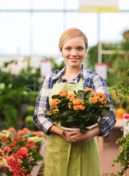 happy woman holding flowers in greenhouse Stock photo © dolgachov