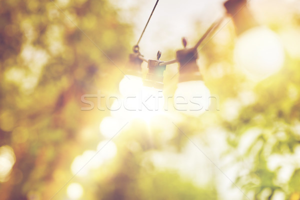 close up of light bulb garland hanging in garden Stock photo © dolgachov