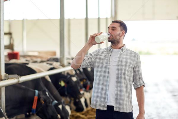 man or farmer drinking cows milk on dairy farm Stock photo © dolgachov