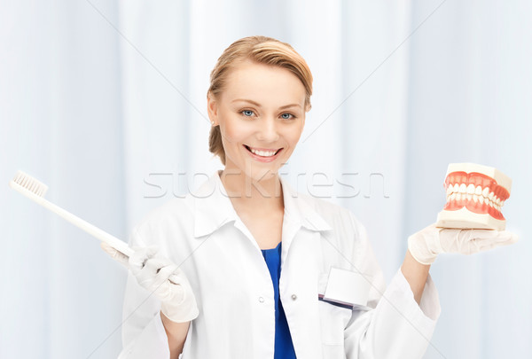 attractive female doctor with toothbrush and jaws Stock photo © dolgachov