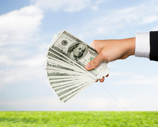 Mężczyzna strony Dolar pieniężnych Zdjęcia stock © dolgachov