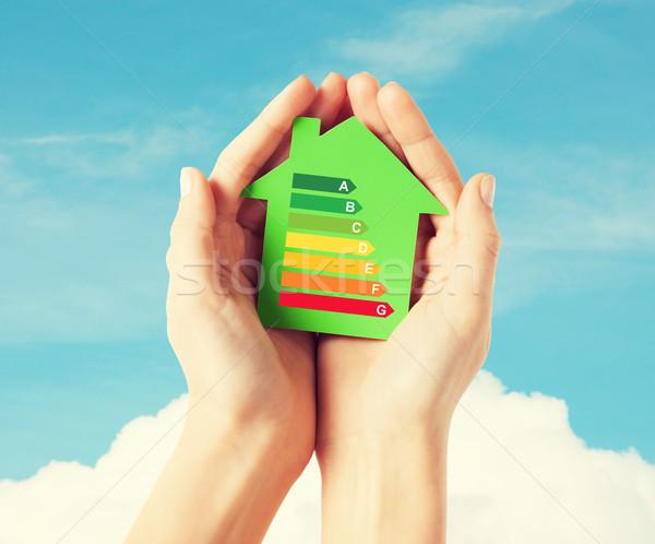 hands holding green paper house Stock photo © dolgachov