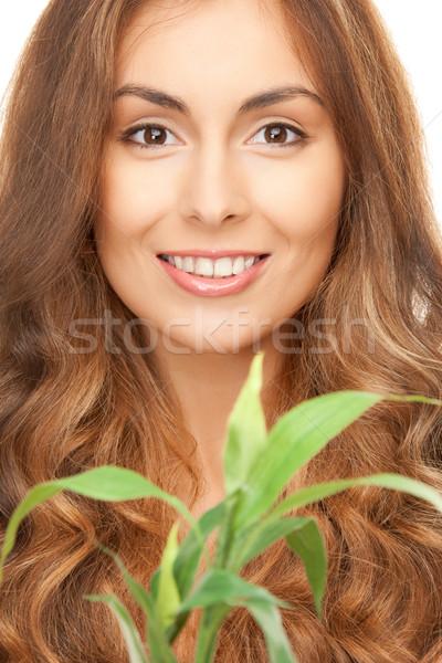Stock fotó: Nő · zöld · hajtás · közelkép · kép · egészség