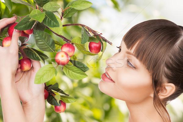 Femme pomme brindille eco bio organique Photo stock © dolgachov