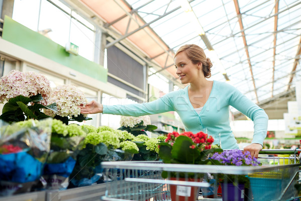 happy woman with shopping cart and flowers in shop Stock photo © dolgachov