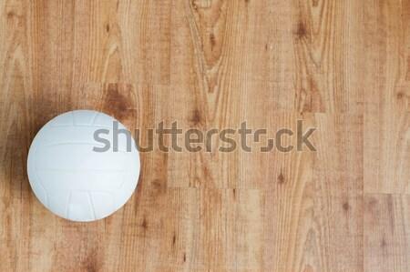 バレーボール ボール スポーツ フィットネス ストックフォト © dolgachov