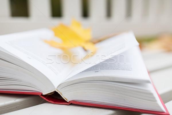Livre ouvert banc automne parc saison éducation Photo stock © dolgachov