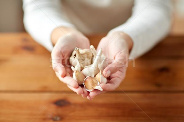 close up of woman hands holding garlic Stock photo © dolgachov