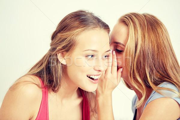 Szczęśliwy młodych kobiet plotka domu przyjaźni Zdjęcia stock © dolgachov