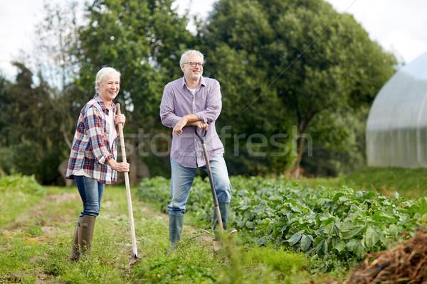 Couple de personnes âgées jardin ferme jardinage agriculture Photo stock © dolgachov