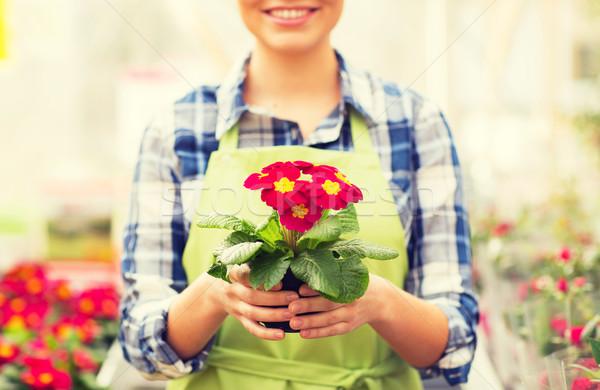 Mujer flores invernadero personas Foto stock © dolgachov