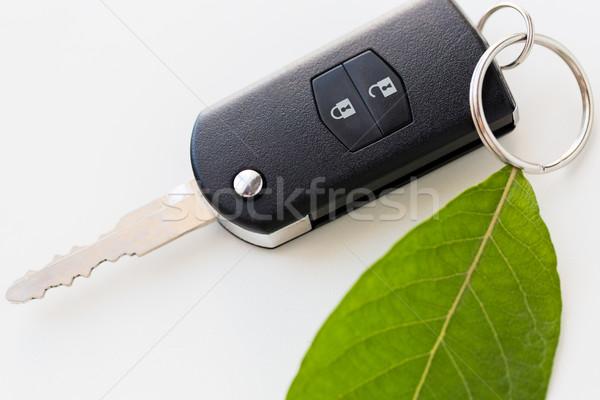 車のキー 緑色の葉 保全 環境 輸送 ストックフォト © dolgachov