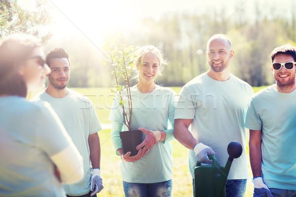 Grupy wolontariusze drzewo sadzonka parku wolontariat Zdjęcia stock © dolgachov