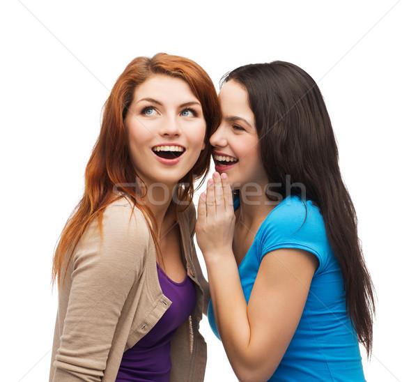 Iki gülen kızlar dedikodu dostluk Stok fotoğraf © dolgachov