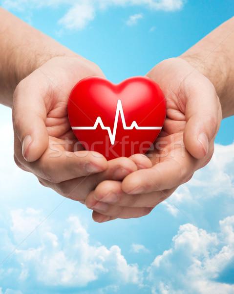 Közelkép kezek tart szív kardiogram család Stock fotó © dolgachov