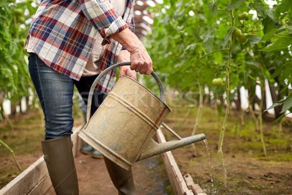 Altos mujer regadera granja invernadero Foto stock © dolgachov