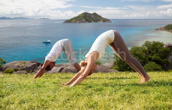 Lächelnd Paar Yoga Freien Fitness Stock foto © dolgachov