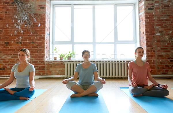 group of people meditating at yoga studio Stock photo © dolgachov
