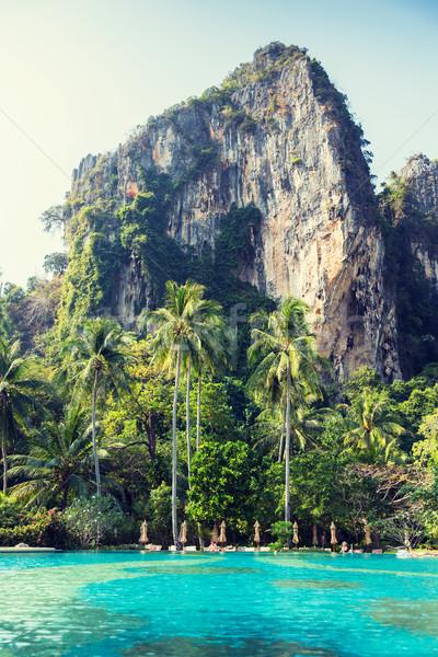 úszómedence Thaiföld turisztikai üdülőhely tengerpart nyár Stock fotó © dolgachov