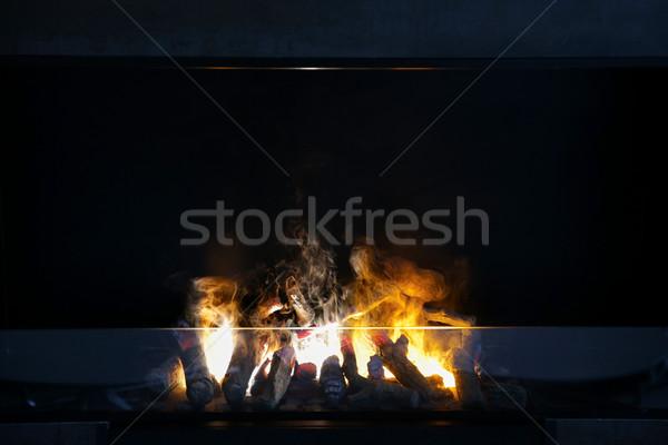 Płomień drewno opałowe palenie nowoczesne ognisko ogrzewania Zdjęcia stock © dolgachov