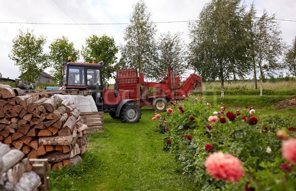 Brandhout boerderij land verwarming landbouw Stockfoto © dolgachov