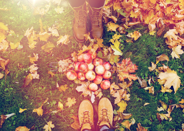 Láb csizma almák őszi levelek gazdálkodás évszak Stock fotó © dolgachov