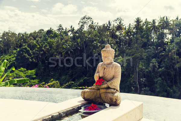 infinity edge pool with buddha statue Stock photo © dolgachov