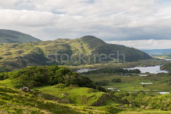 Folyó park völgy Írország természet tájkép Stock fotó © dolgachov