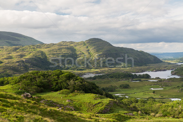 реке парка долины Ирландия природы пейзаж Сток-фото © dolgachov