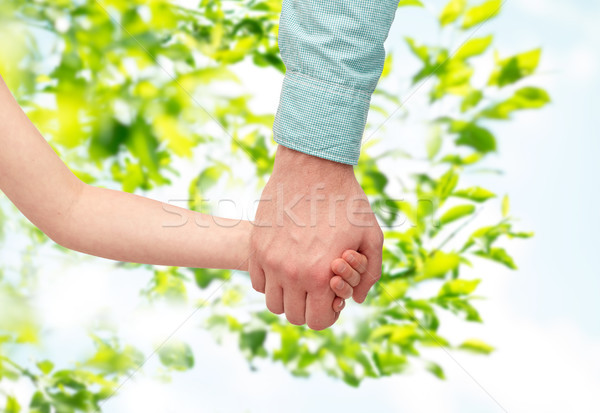 Padre nino tomados de las manos hojas verdes familia infancia Foto stock © dolgachov