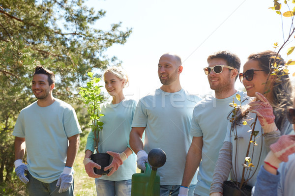 Stock photo: group of volunteers with tree seedlings in park
