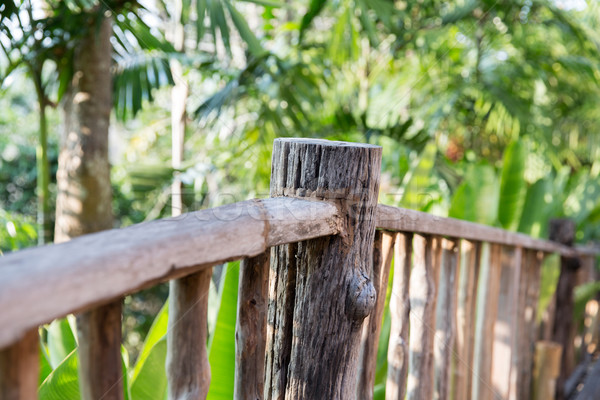 wooden fence at tropical woods or park Stock photo © dolgachov