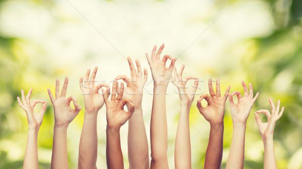 human hands showing ok sign Stock photo © dolgachov