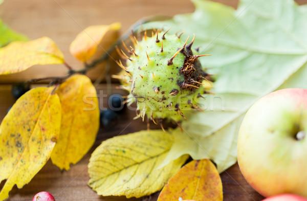 Foto d'archivio: Frutti · frutti · di · bosco · natura · stagione