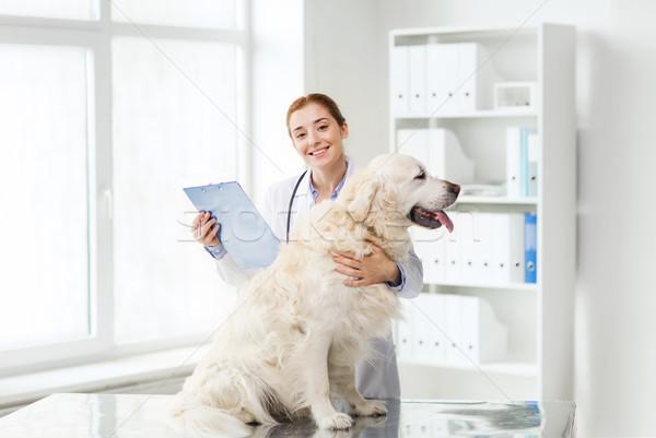 Gelukkig arts retriever hond dierenarts kliniek Stockfoto © dolgachov
