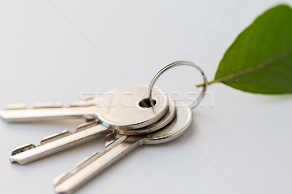家 キー 緑色の葉 住宅 環境 ストックフォト © dolgachov