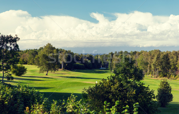 natural landscape with golf field or course view Stock photo © dolgachov
