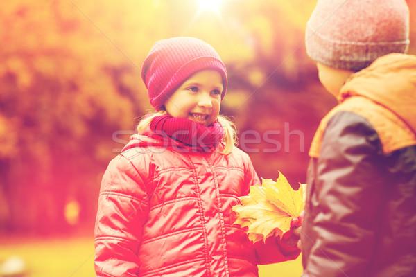Kicsi fiú ősz juhar levelek lány Stock fotó © dolgachov