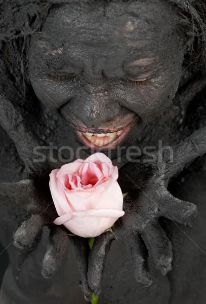 pink rose Stock photo © dolgachov