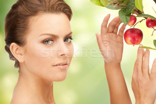 женщину яблоко веточка фотография лице красоту Сток-фото © dolgachov