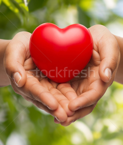 womans cupped hands showing red heart Stock photo © dolgachov