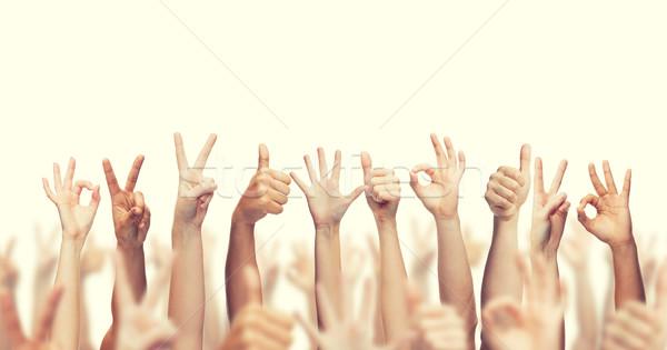 Stock fotó: Emberi · kezek · mutat · remek · ok · béke
