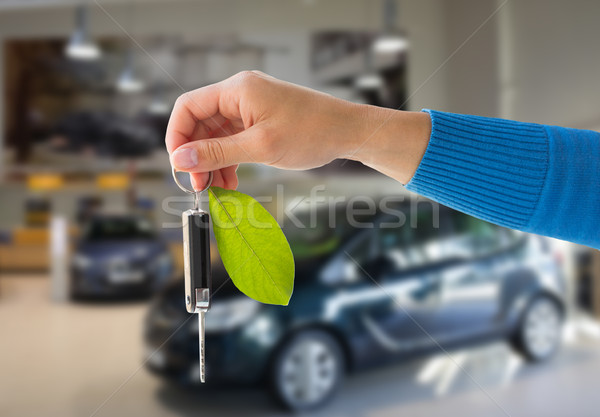 close up of hand holding car key with green leaf Stock photo © dolgachov